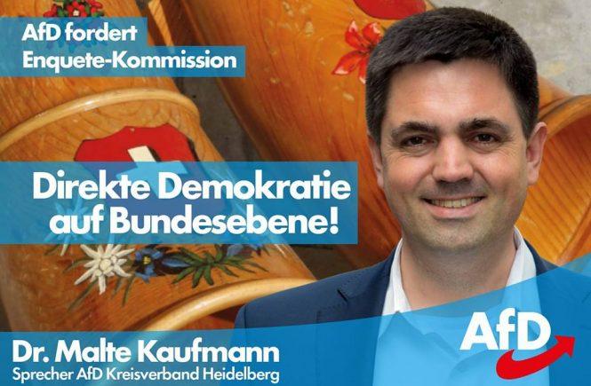 Dr. Malte Kaufmann Direkte Demokratie auf Bundesebene