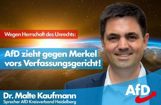 AfD Verfassungsgericht Dr. Malte Kaufmann