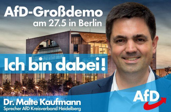 Dr. Malte Kaufmann AfD 27.5.2018 Großdemo in Berlin
