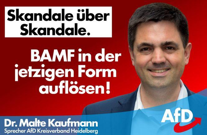 Dr. Malte Kaufmann AfD BAMF auflösen