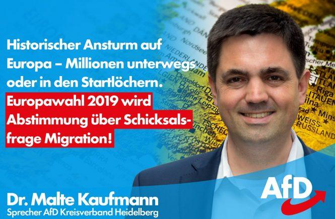 Dr. Malte Kaufmann AfD Europawahl wird Abstimmung über Migrationsfrage