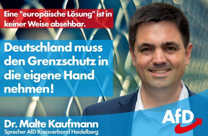 Dr. Malte Kaufmann AfD Grenzschutz in die eigene Hand nehmen