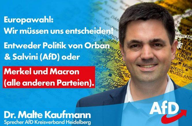 Dr. Malte Kaufmann Orban und Salvini oder Merkel und Macron