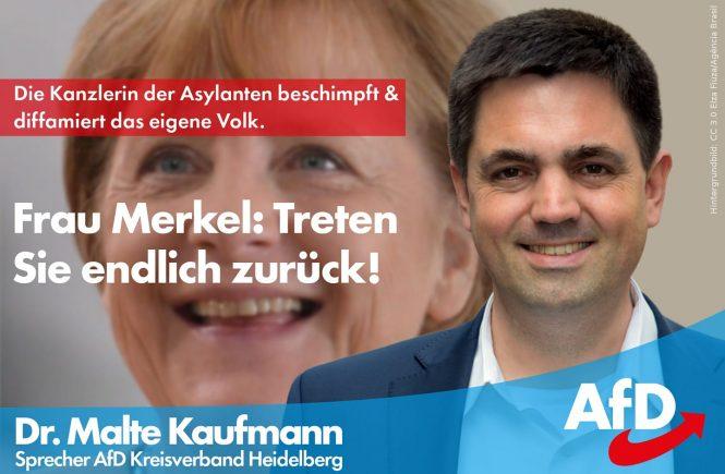 Dr. Malte Kaufmann Rücktritt AfD Rücktritt Angela Merkel AfD