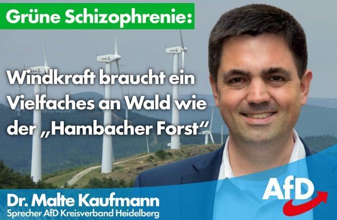 Dr. Malte Kaufmann AfD Hambacher Forst