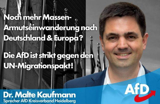 Dr. Malte Kaufmann AfD UN-Migrationspakt