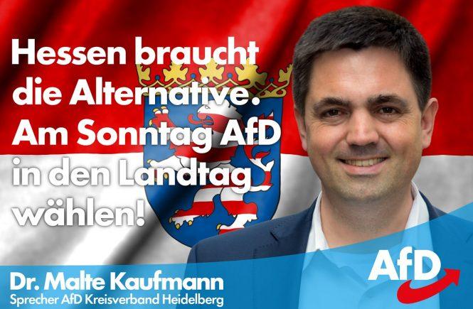 Dr. Malte Kaufmann AfD in Hessen wählen