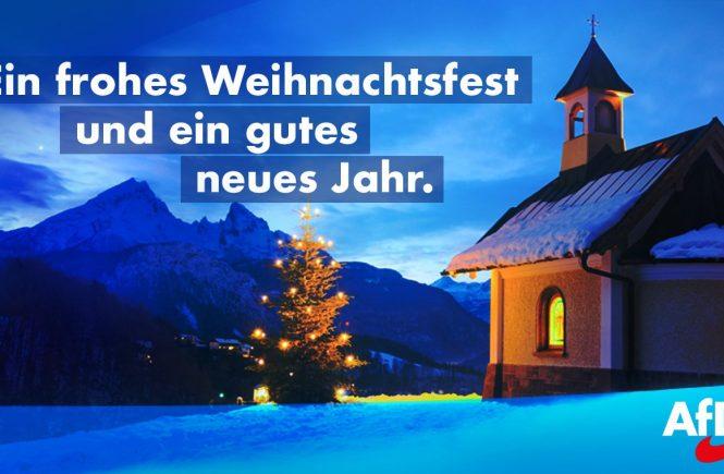 Frohe Weihnachten und gutes neues Jahr Dr. Malte Kaufmann AfD