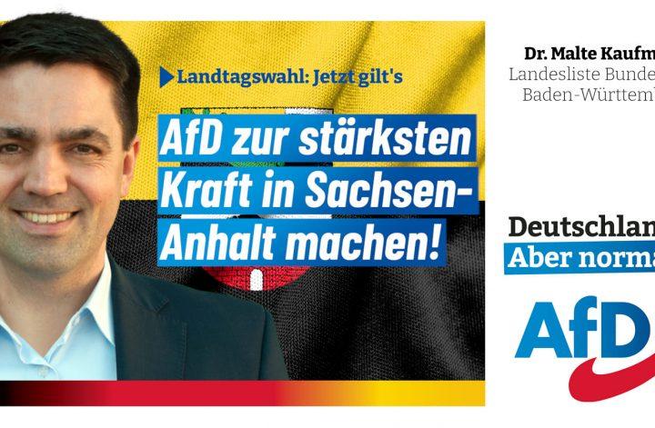 Landtagswahl Sachsen-Anhalt Dr. Malte Kaufmann AfD