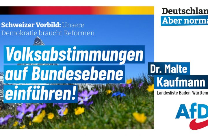 Volksabstimmungen auf Bundesebene einführen! Dr. Malte Kaufmann AfD